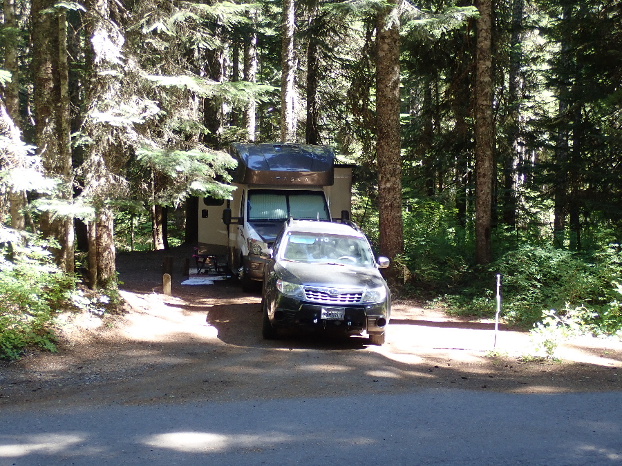 Still Creek campground - way too much shade!