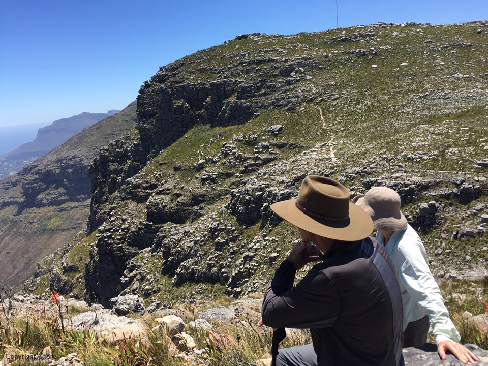 On the trail above Silvermine reserve.