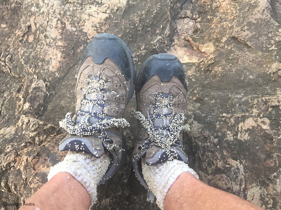 My shoes & socks after a day in the veld.