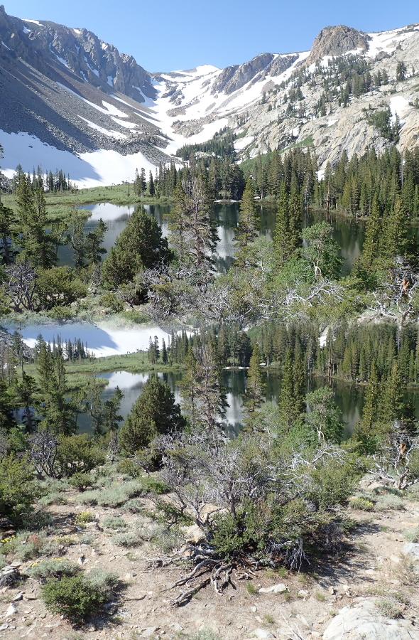 More of Fern Lake.